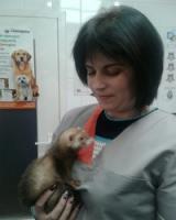 Ветеринарная клиника Запорожье, качественное обслуживание - сайт vet.zp.ua
