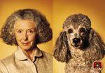 Собаки и их владельцы: никакой разницы!